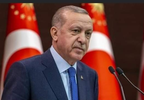 Terrorist Group Who Attempted To Overthrow Me Is Active In Nigeria - Turkish President, Erdogan Tells President Buhari