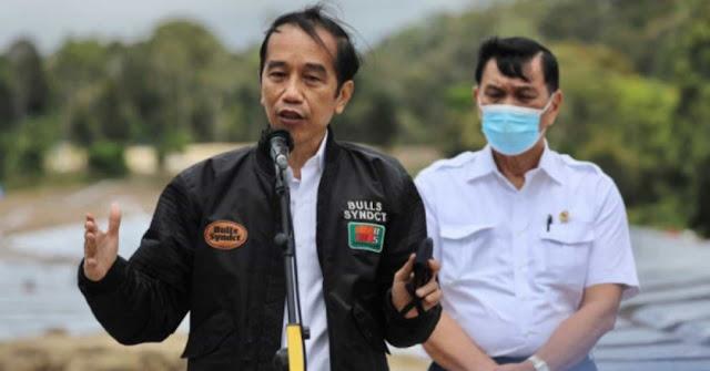 Tak Ditanya Jokowi soal Pandora Papers, Luhut: Presiden Tak Suka Gosip