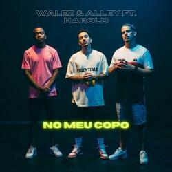 Walez & Alley feat. Harold - No Meu Copo (2021) [Download]