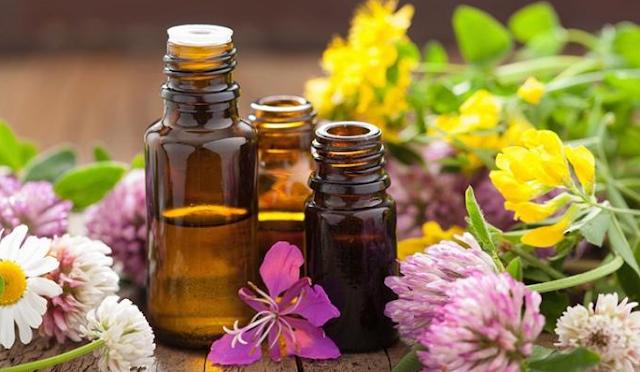 Ingin Tahu Apakah Essential Oils Anda Asli/Palsu, Simak Triknya Disini!