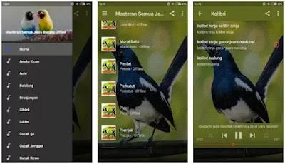 Masteran Semua Jenis Burung Offline
