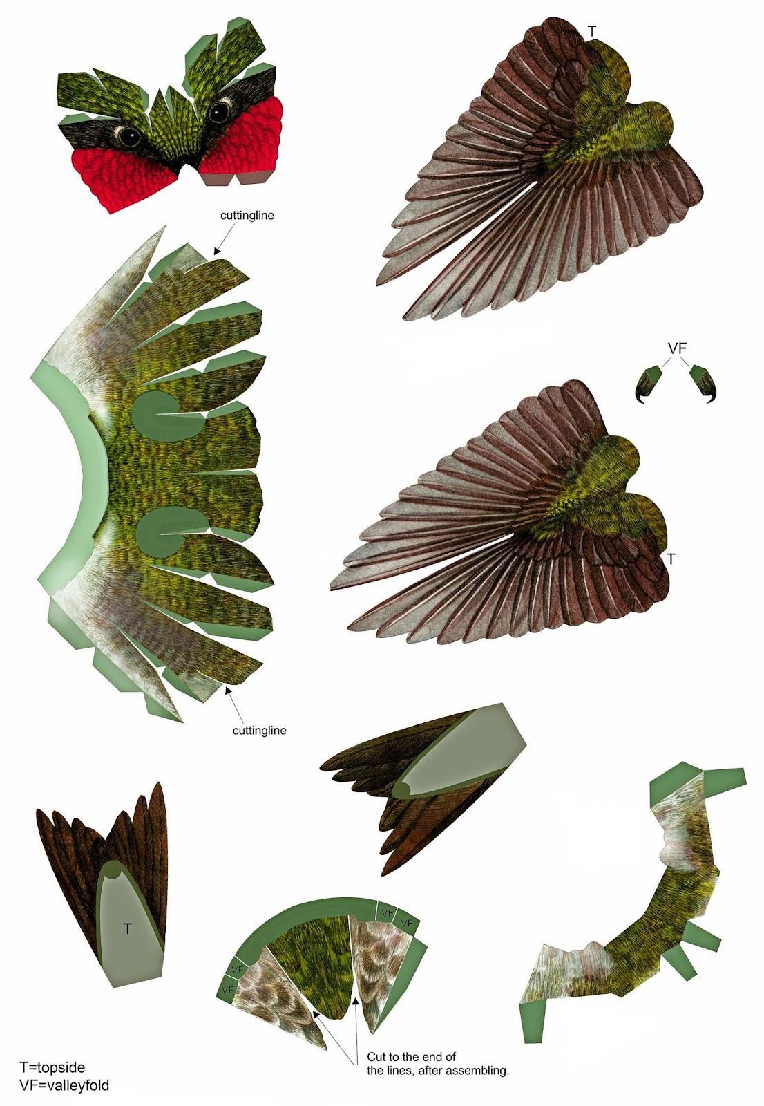 Колибри из бумаги своими руками. Сборная бумажная модель
