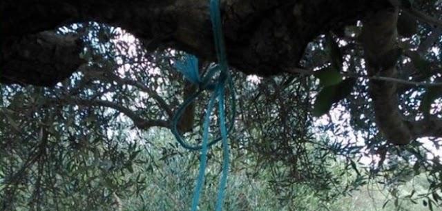 Γιαννιτσά: Σοκ για παρέα κυνηγών – Βρήκε γυναίκα κρεμασμένη σε δέντρο