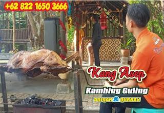 Kambing Guling di Ciparay Bandung   Ekspress,Kambing Guling di Ciparay Bandung,kambing guling di ciparay,kambing guling ciparay,kambing guling di ciparay bandung,kambing guling ciparay bandung,kambing guling bandung,