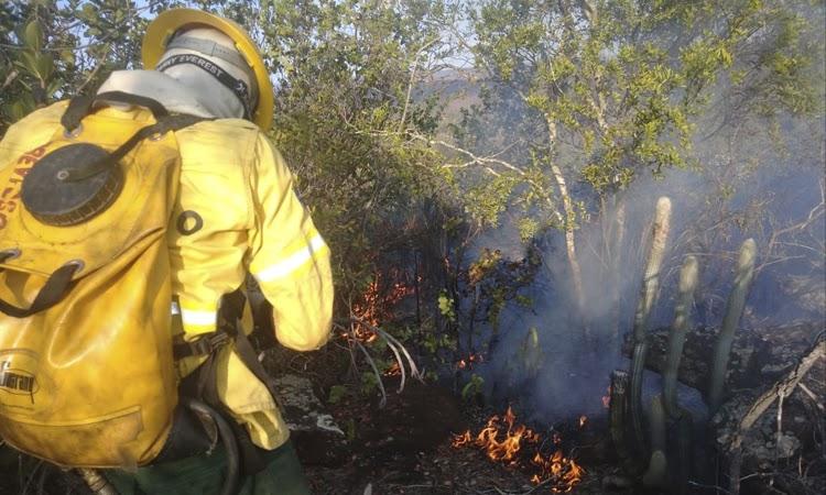 Brigadistas combatem incêndios florestais entre Iramaia e Ibicoara