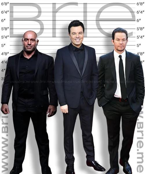 Seth MacFarlane height comparison with Joe Rogan and Mark Wahlberg