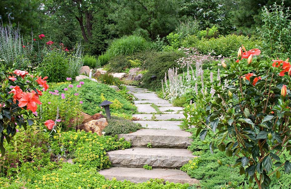 5 Common Gardening Mistakes to Avoid