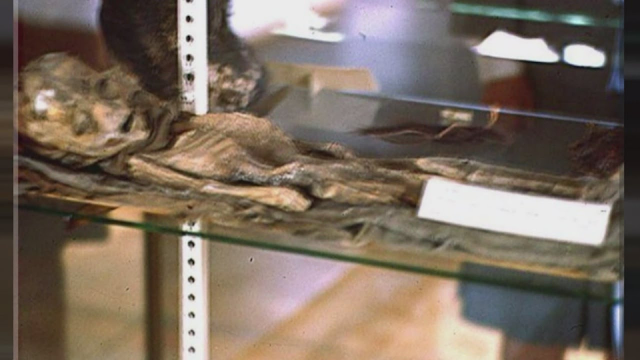 Physical Evidence Alien's Were Recovered From Roswell Slides Authenticated By Kodak 1