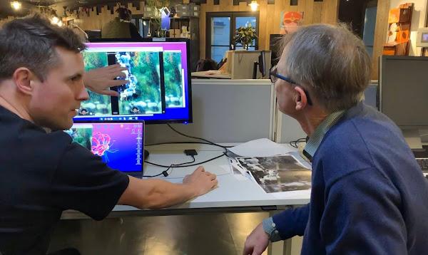 Google recupera pinturas de Gustav Klimt com ajuda do Machine Learning