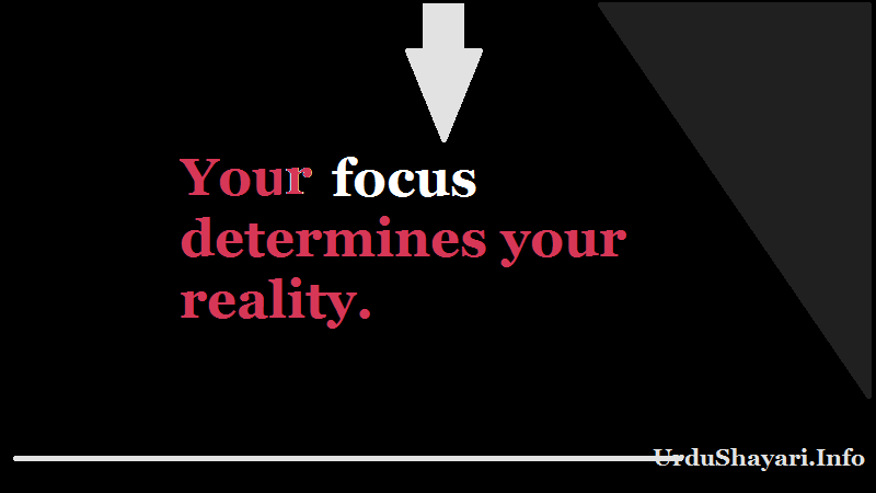 Short quote about focus and reality