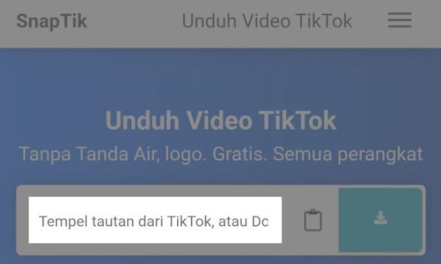 Cara Download Video Tiktok di Snaptik