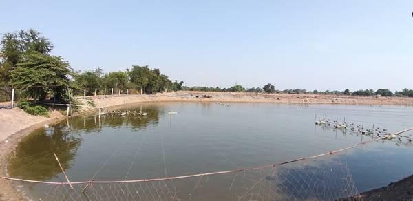 ขายที่ดินสวยติดแม่น้ำบางปะกง จังหวัดฉะเชิงเทรา ขนาด 107 ไร่ 48 ตารางวา