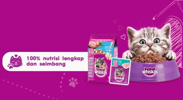 Cara Memberikan Makanan Kucing dengan Whiskas Basah
