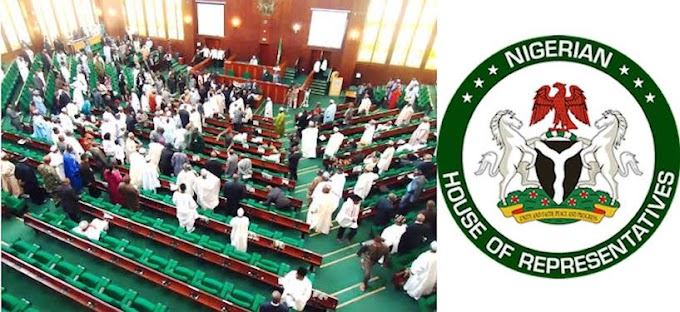 Carpenters, Taxi Drivers Should Be Made To Pay Tax. They Make A Lot Of Money - House Of Reps