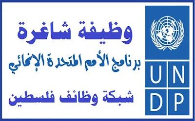 وظيفة منسق مشروع – برنامج الأمم المتحدة الإنمائي UNDP