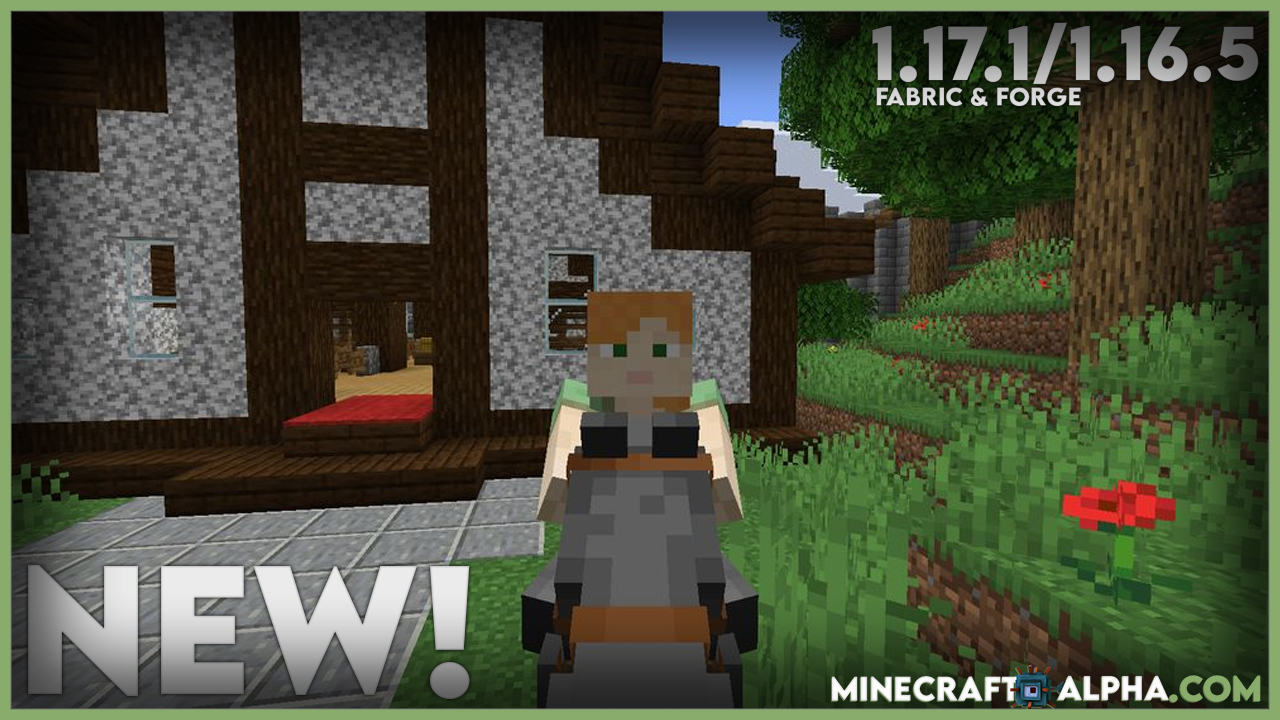 Not Enough Animations Mod 1.17.1 (Forge - Fabric)