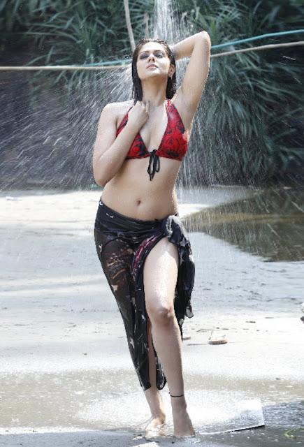 Sexy Bikini Photos of Sakshi Chaudhary Navel Queens