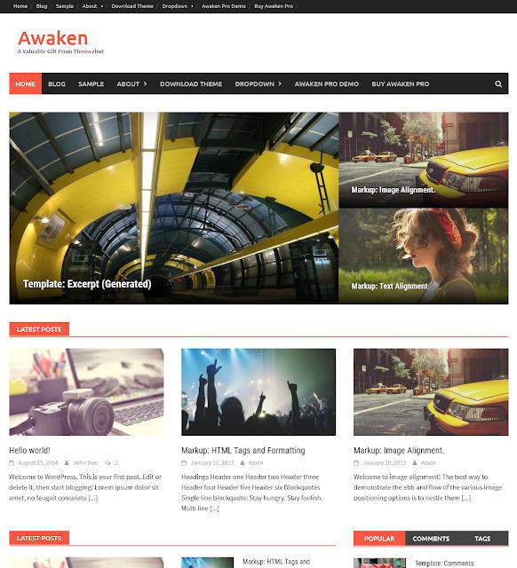 Awaken Best Free WordPress Themes For Blogs 2021