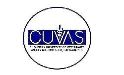 Cholistan University of Veterinary and Animal Sciences CUVAS 1st Merit List Upload Admission Fall 2021