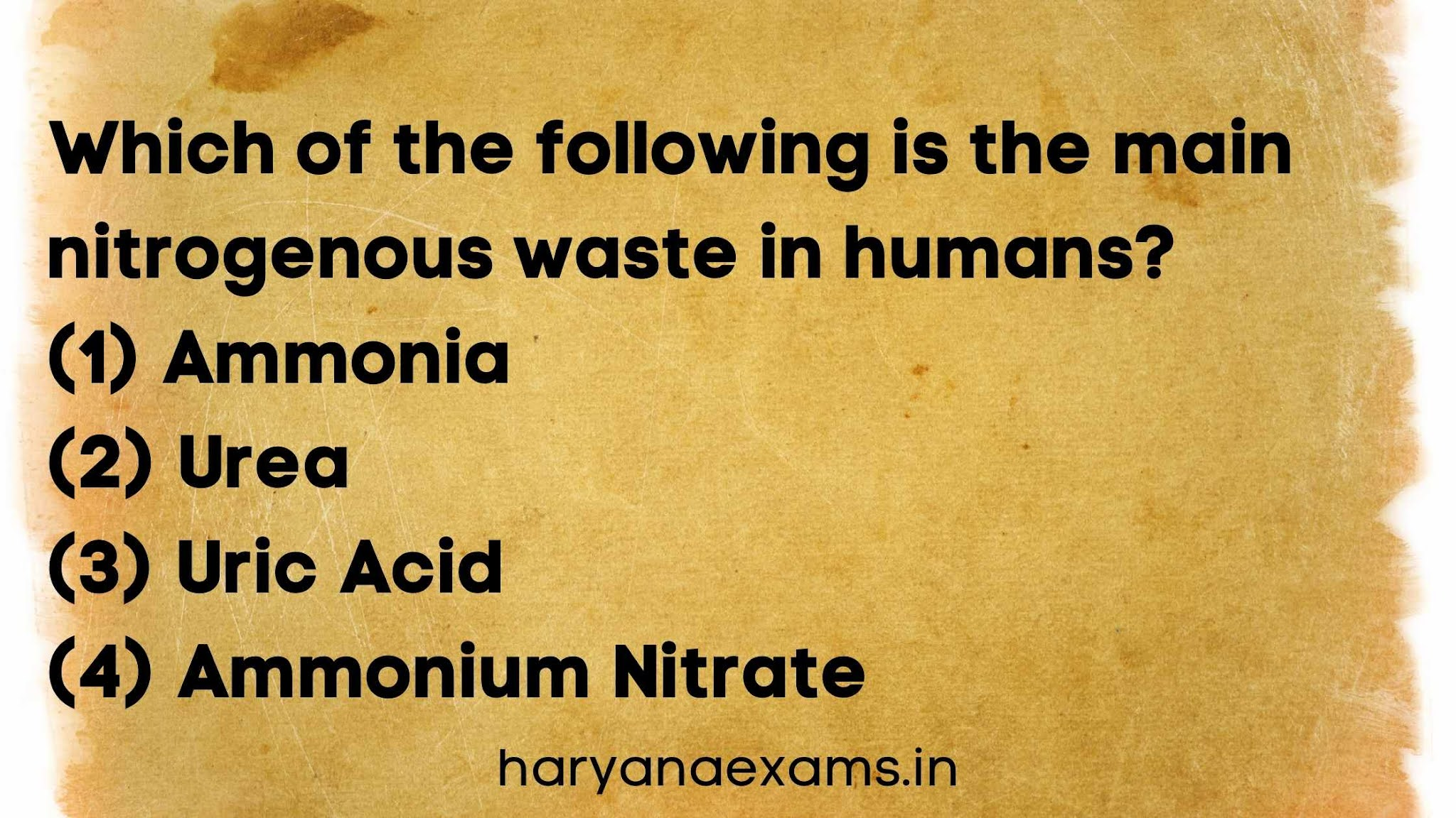 Which of the following is the main nitrogenous waste in humans?   (1) Ammonia   (2) Urea   (3) Uric Acid   (4) Ammonium Nitrate
