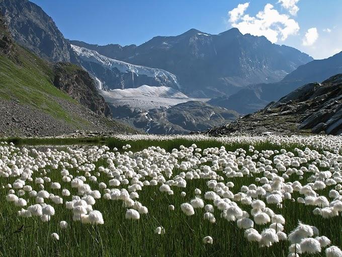 """Mercredi 20 octobre 2021 : Documentaire """"Italie : Les montagnes de la Valteline"""""""