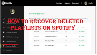 Recovery deleted playlists on Spotify: How to recover deleted playlists on Spotify easily
