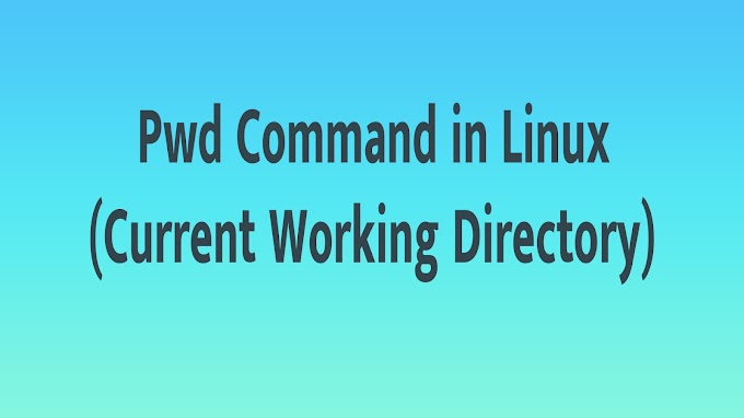 Pwd Command in Linux (Current Working Directory)