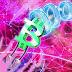 CEO Pantera Capital: đổ vỡ giá Bitcoin tiếp theo sẽ 'ít hơn' 80%