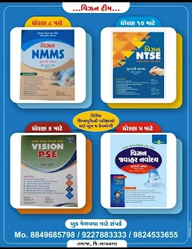 VISION NMMS PRACTICE TEST PAPER