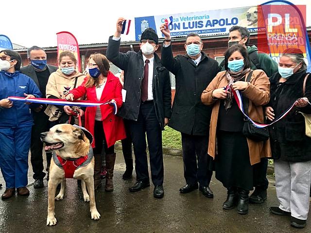 Osorno cuenta nueva clínica veterinaria municipal
