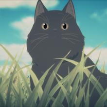 Kanojo to Kanojo no Neko - Everything Flows -   Ella y su gato - Todo fluye - [BD]
