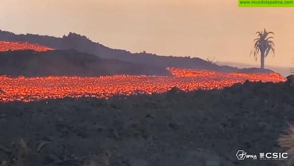 El volcán de La Palma afecta ya a más de 640 hectáreas