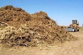 Jenis-Jenis Biomassa