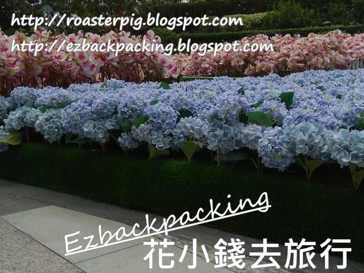 元朗Yoho Mall白鷺花園 繡球花蘭花
