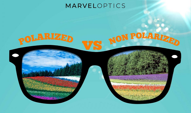 How do Polarized and Non-Polarized sunglasses differ from each other