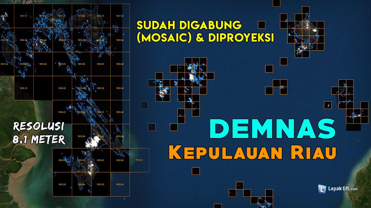 DEM Nasional (DEMNAS) Provinsi Kepulauan Riau Terbaru