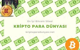 Kripto Paralar Hakkında Detaylı Yorum ve Analizler