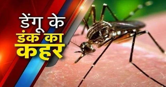 हिमाचल में पांव पसार रहा डेंगू: 261 मरीज मिले; एक ही जिले में 194 मामले, यहां ख़तरा अधिक