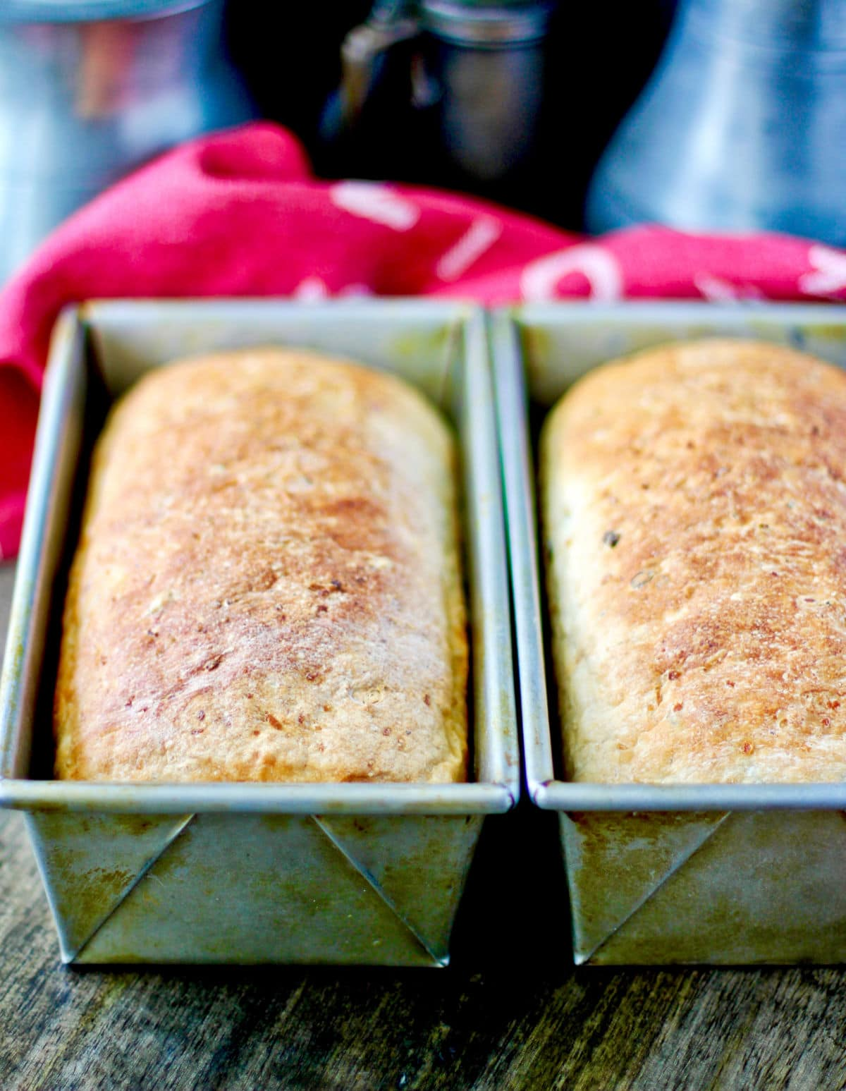 Wild Rice and Onion Bread loaves in pans.