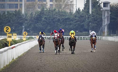 21 Ekim İzmir At Yarışı Galopları