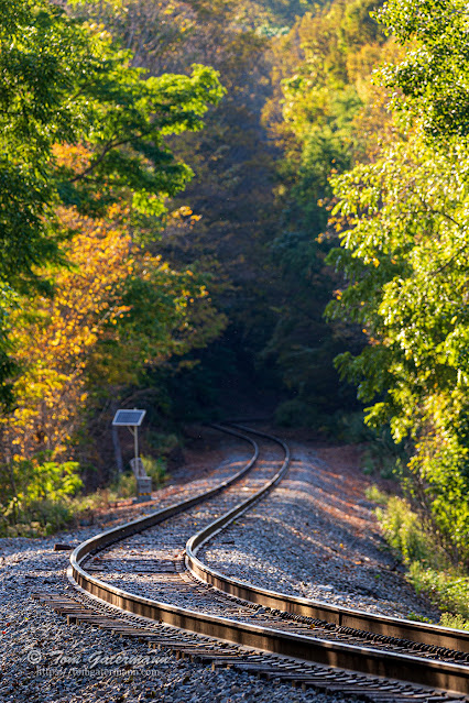 Westward view down the Finger Lakes Railway's tracks at Martisco