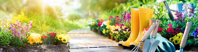 Benefits of Gardening for the Health of older people