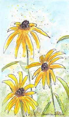 Rudbeckia watercolour flowers (aka Black-Eyed Susans).