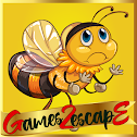 G2E Find Honey For Bee