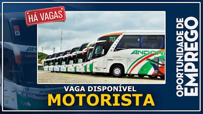 Empresa Andorinha abre vagas para motorista de ônibus