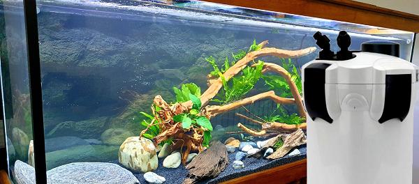 Aquarium Filter for Red Blood Parrot Cichlid Fish