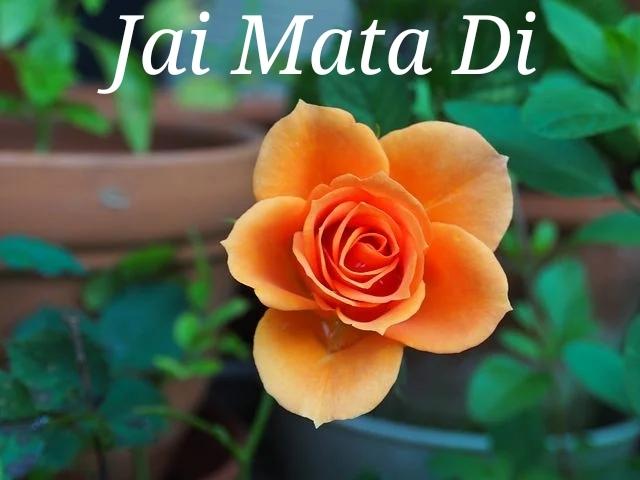Happy Navaratri  Jai Mata Di