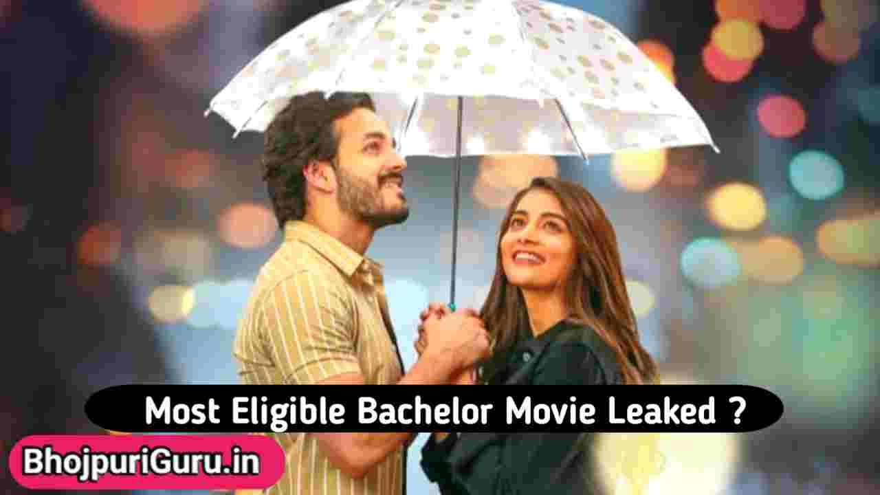Most Eligible Bachelor Full Movie Download