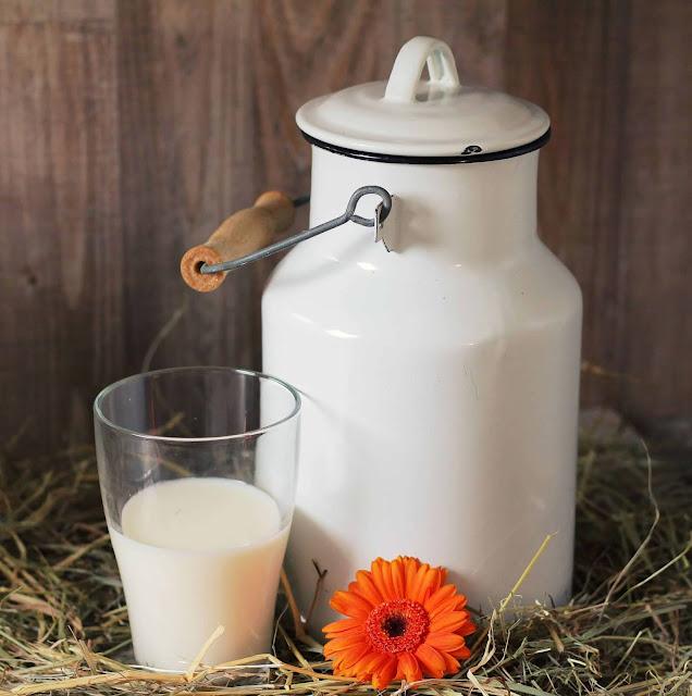 susu untuk lansia