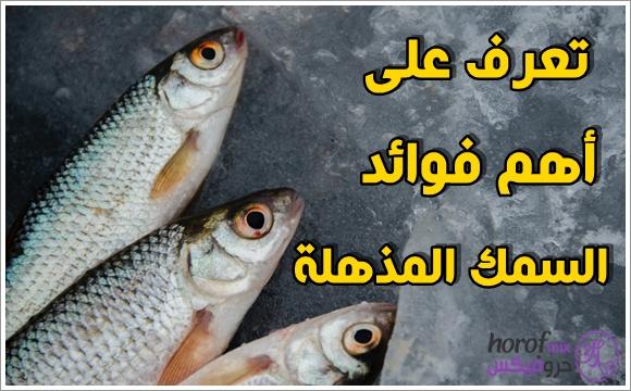 تعرف على أهم فوائد السمك المذهلة